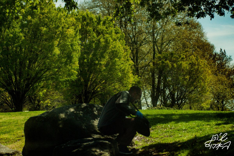 Covid-Park-Goer-Beautiful-Trees-Person-Mask-Greens