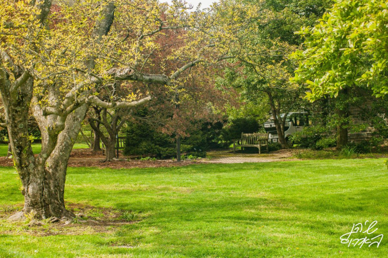 Swarthmore-Grounds-1-of-many