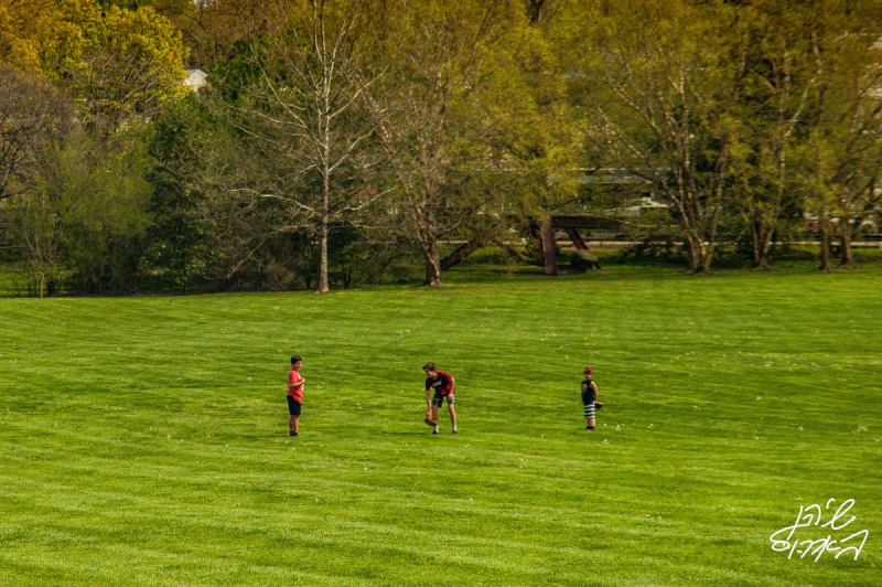 Swarthmore-Grounds-4-of-many
